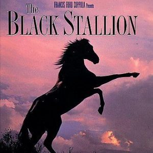 The Black Stallion (DVD) 1979 Film Francis Ford Coppola Film New Factory Sealed