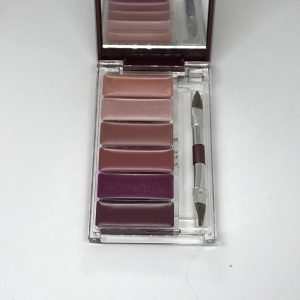 Avon Lacquer Your Lips Cool Collection 6 Shades Lipstick Brush with Mirror